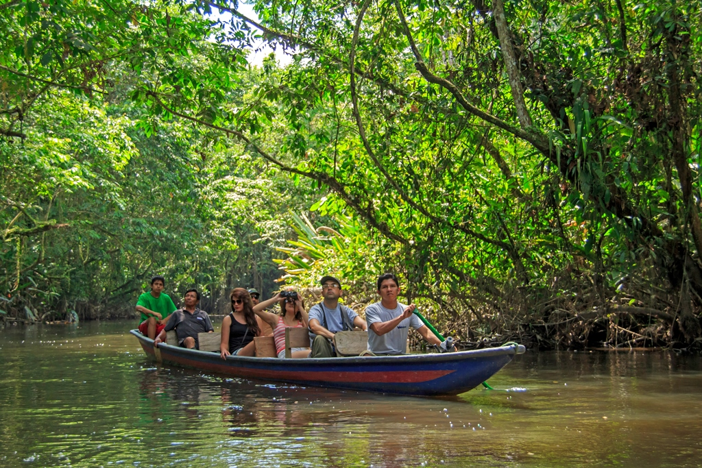 Amazon Canoe Excursions