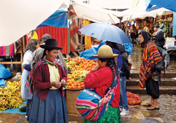 Amazon Otavalo Indian Market
