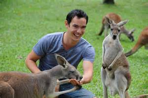 Kangaroo feeding Brisbane